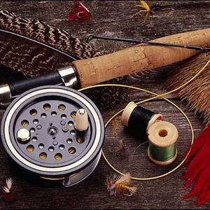 Охотничьи и рыболовные магазины Дарьинского