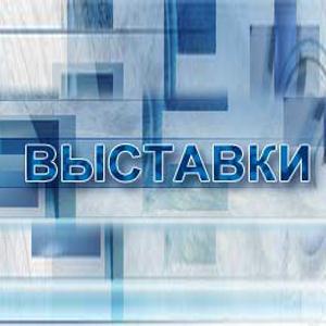 Выставки Дарьинского